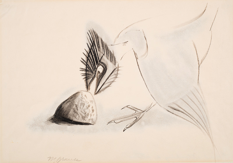 Graves, Bird Attacking a Stone